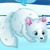ARCTIC FOXES CARE GAME