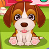 CUTE PUPPY PET CARE