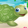 CARE BABY TURTLE PET
