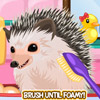 CUTE HEDGEHOG GAME