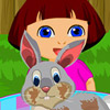DORA RABBIT CARE