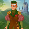 FAIRY TALE PRINCE DISNEY STYLE DRESS UP
