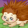 HEDGEHOG CARE GAME