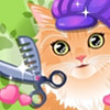 KITTY GROOMER GAME