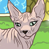 Sphynx Cat Care Game